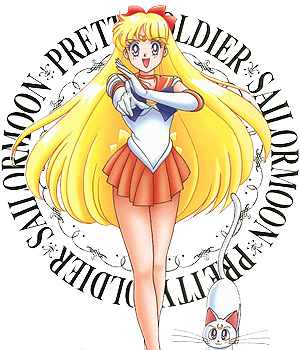 Sailor Moon DVD Vol